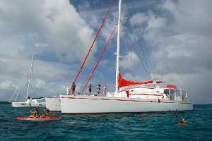 Catamaran Dream 82